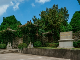 Two Mausoleums of Southern Tang Dynasty